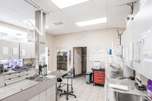 Animal Clinic - Treatment Room