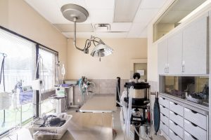 Animal Clinic - Surgical Equipment